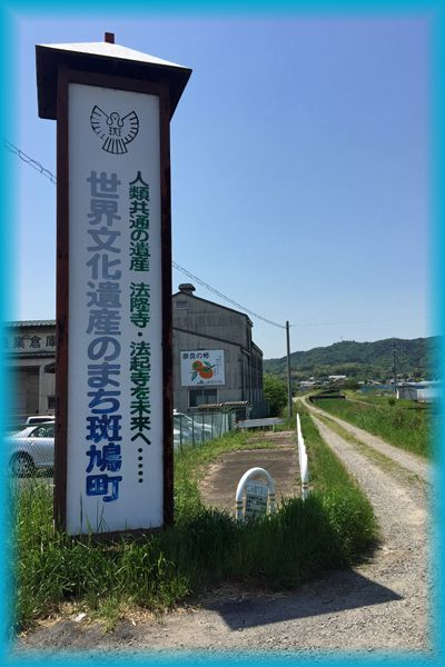 201604_2ikaruga01