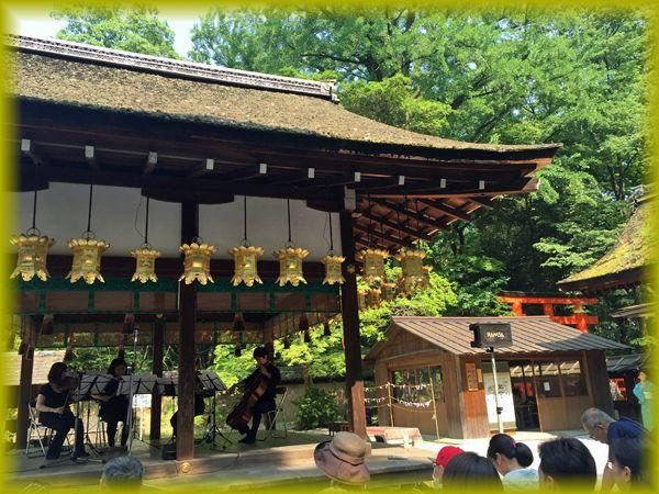 2016052_shimogamo02