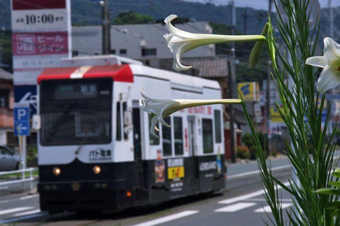 Toyohashi_sinaisen13