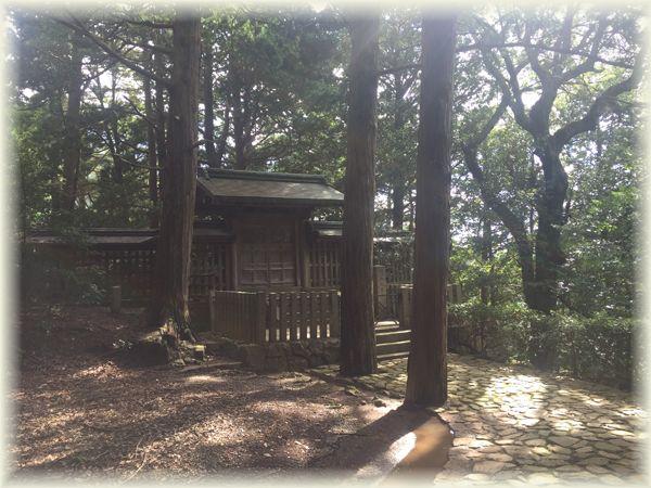 201610_1muzuo26