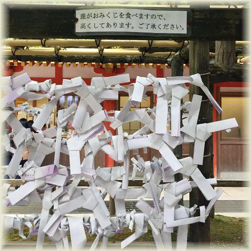 201610_2kasuga02