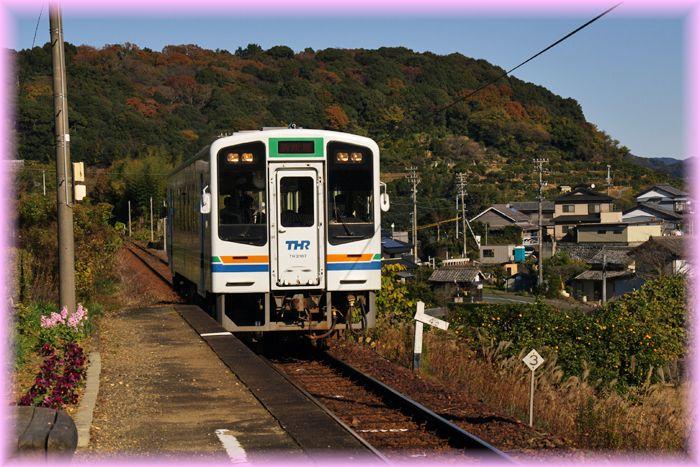 Tenhama46