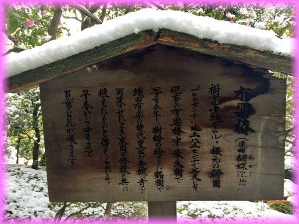 201702_12tougiin09
