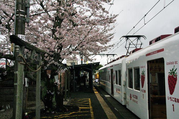 Wakayama_den04
