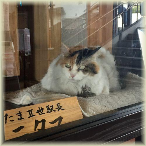Wakayama_den09
