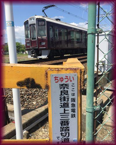 Minami_ibaraki10