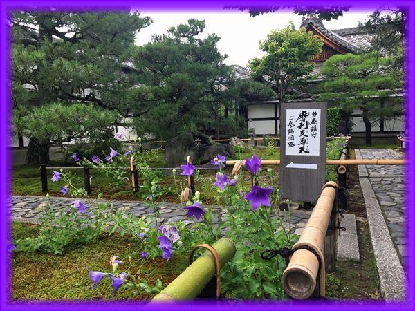201707_5higashiyama24