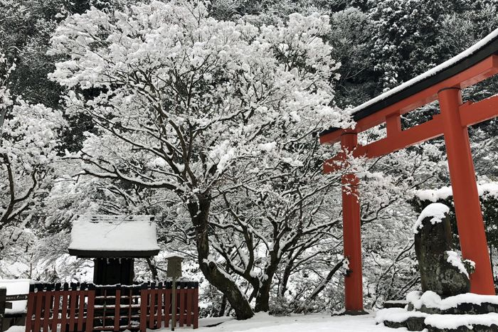 201801_kyoto32