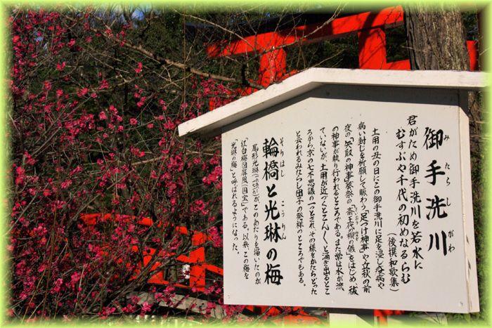 201901_kyoto41