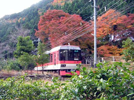 Kurama15